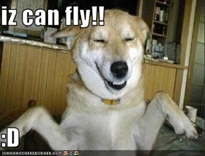 iz can fly!!  :D
