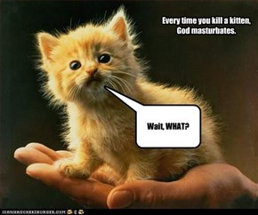 Every time you kill a kitten, God masturbates.