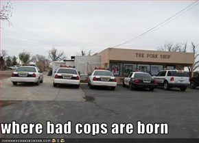 where bad cops are born