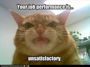 Your job performance is...