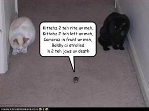 Charge uv teh kitteh brigade