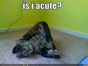 is i acute?