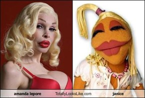 amanda lepore Totally Looks Like janice