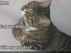 Mom Can you help me with my prayers?