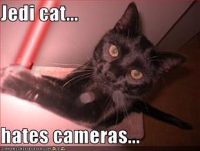 Jedi cat...  hates cameras...