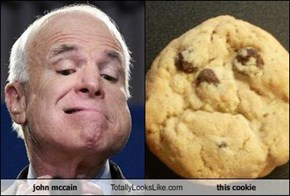 john mccain Totally Looks Like this cookie