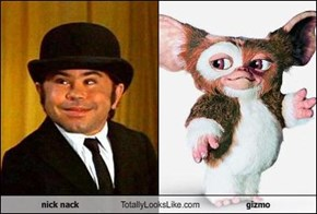 nick nack Totally Looks Like gizmo