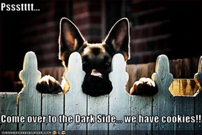 Pssstttt...  Come over to the Dark Side... we have cookies!!