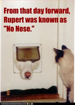 "From that day forward, Rupert was known as ""No Nose."""