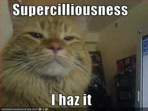 Supercilliousness  I haz it