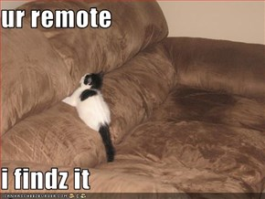 ur remote  i findz it