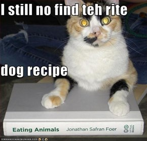 I still no find teh rite dog recipe