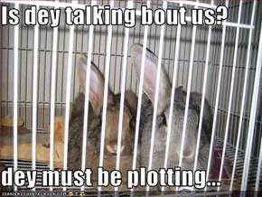Is dey talking bout us?  dey must be plotting...