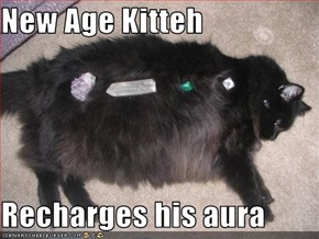 New Age Kitteh  Recharges his aura