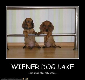 WIENER DOG LAKE