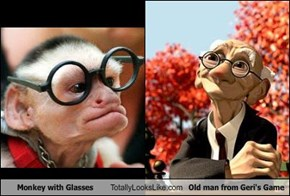 Monkey with Glasses Totally Looks Like Old man from Geri's Game