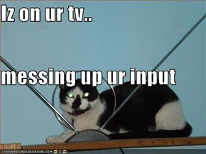 Iz on ur tv.. messing up ur input