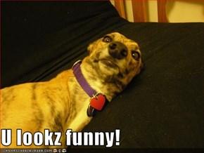 U lookz funny!