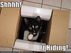 Shhhh!  Iz Hiding!