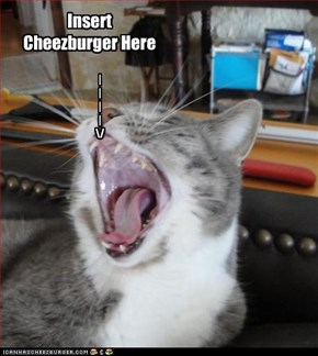 Insert Cheezburger Here