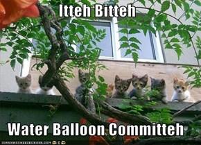 Itteh Bitteh  Water Balloon Committeh