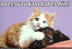noes!  you kant habes him!
