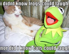 i didnt know frogs could laugh  nor did i know cats could laugh
