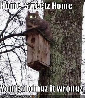 Home, Sweetz Home  You is doingz it wrongz.