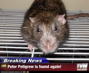Breaking News - Peter Petigrew is found again!