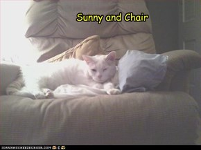 Sunny and Chair