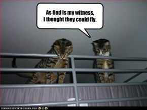 As God is my witness, I thought they could fly.