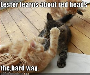 Lester learns about red heads  the hard way.