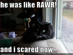 he was like RAWR!  and i scared now...