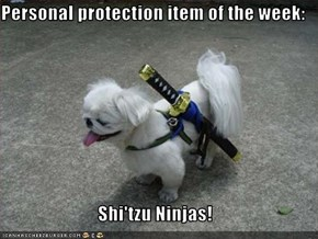 Personal protection item of the week:  Shi'tzu Ninjas!
