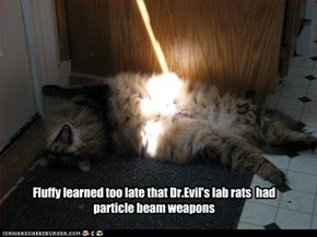 Fluffy learned too late that Dr.Evil's lab rats  had  particle beam weapons