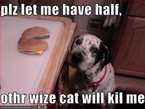 plz let me have half,  othr wize cat will kil meh