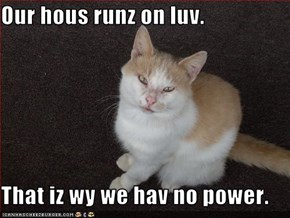 Our hous runz on luv.  That iz wy we hav no power.