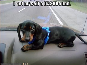 I got myself a DASHhound.