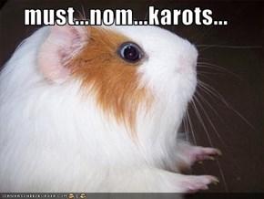 must...nom...karots...