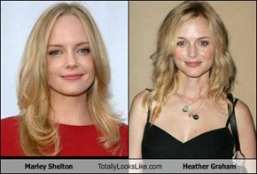 Marley Shelton Totally Looks Like Heather Graham
