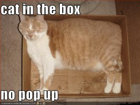cat in the box  no pop up