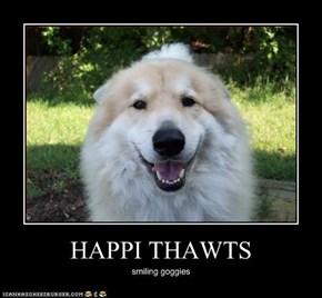 HAPPI THAWTS