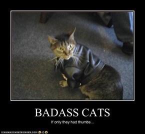 BADASS CATS
