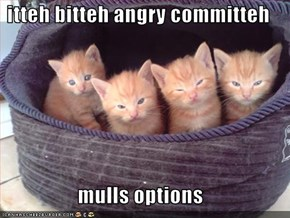 itteh bitteh angry committeh   mulls options