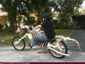 Mad Cow Bike
