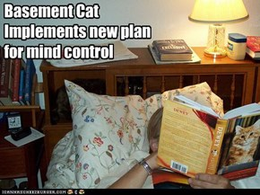 Basement Cat Implements new plan for mind control