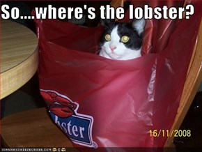 So....where's the lobster?