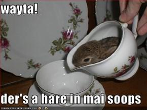 wayta!  der's a hare in mai soops