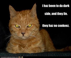 i haz been to da dark   side, and they lie.   they haz no cookeez.