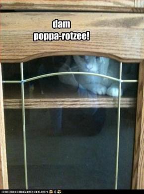 dam  poppa-rotzee!